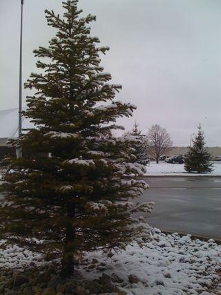 Fargo, ND: It's April 18th. It snowed last night.